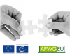Criminal justice authorities and multi-national service providers: enhancing public-private cooperation in cyberspace
